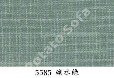 5585 湖水綠