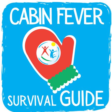 """Play"" Book for Individuals and Families: Cabin Fever Survival Guide"