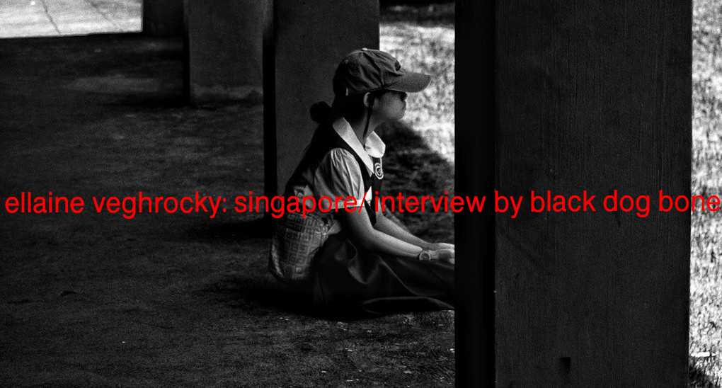 ellaine veghrocky: by black dog bone