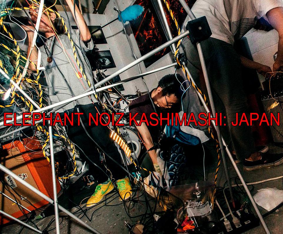 ELEPHANT NOIZ KASHIMASHI: japan interview by black dog bone