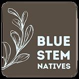 bluestem-31.png
