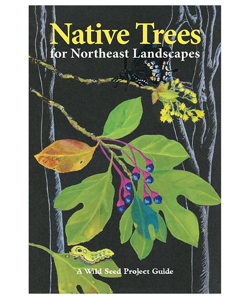 guidebook: Native Trees for Northeast Landscapes