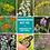 Thumbnail: Monarch plant kits