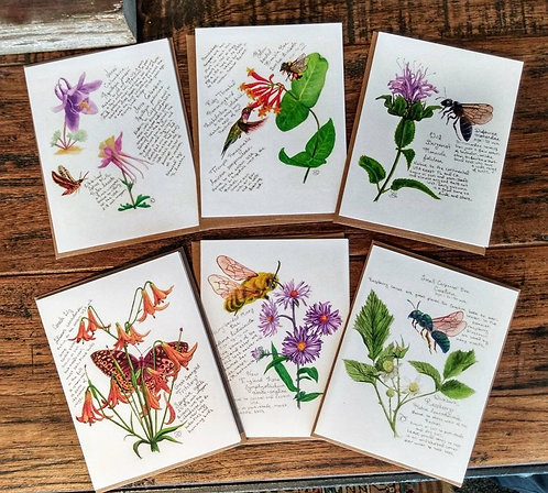 12 Native Plants & their Pollinators cards