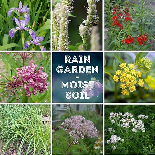 Rain Garden/Moist Soil kit