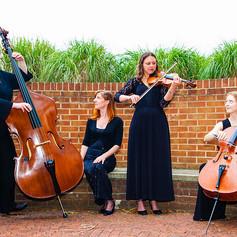 Palmer Ensemble 03 web.jpg