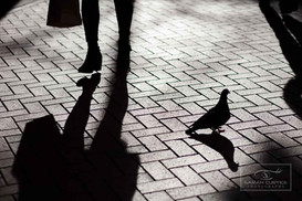 Street Photography Project Sarah Curtice Photography-27.jpg