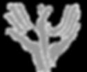 Approche -tissulaire de l'ostéopathie crânienne