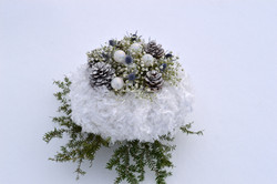 Mariage Hivernal - Blanche Neige