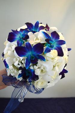 Mariage Portneuf - Velours Bleu