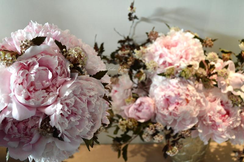 Mariage Québec - Perséides Rosées