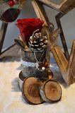 Noël Bois et Rose Préservée