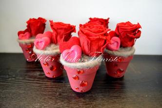 Roses Rouges Préservées - St-Valentin