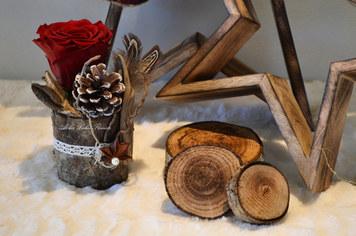 Noël Bois et Fleurs