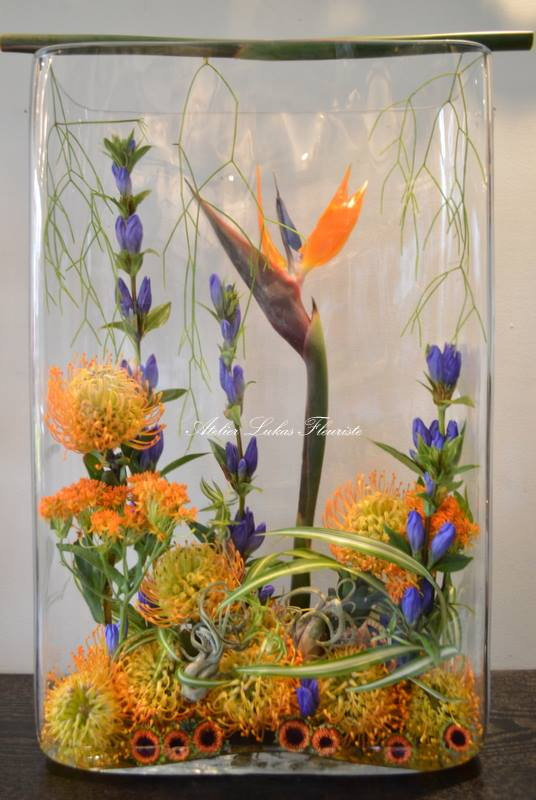 Vase Photo Exotique