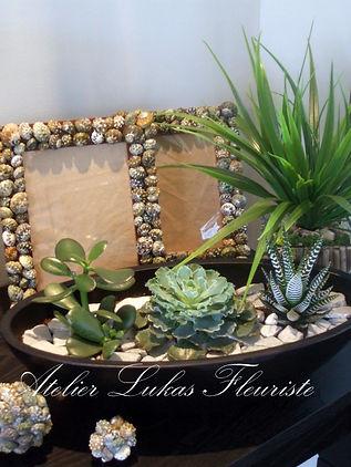Plante Atelier Lukas Fleuriste Portneuf