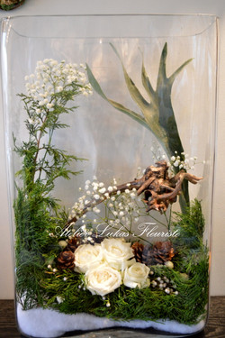 Hivernal Vase Photo