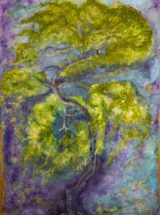 העץ והרוח