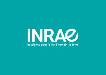 Visuel_INRAE_bleu-vert_1040x740_Actu.jpg