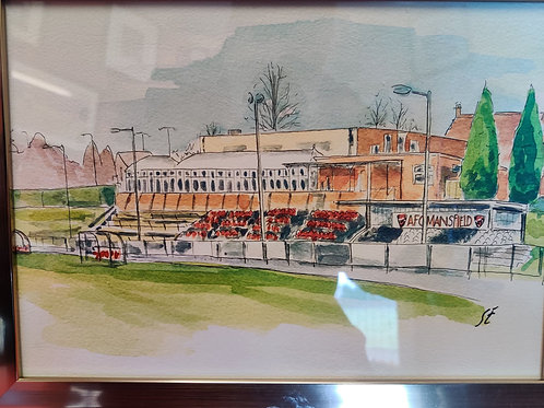 Forest Town Arena unframed painting
