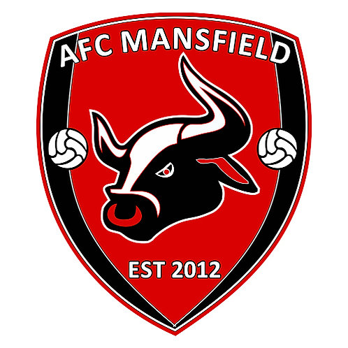 AFC MANSFIELD official  pin badge