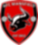 AFC Mansfield badge new colours.png