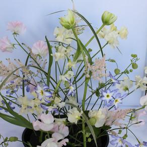 春の花を軽やかに
