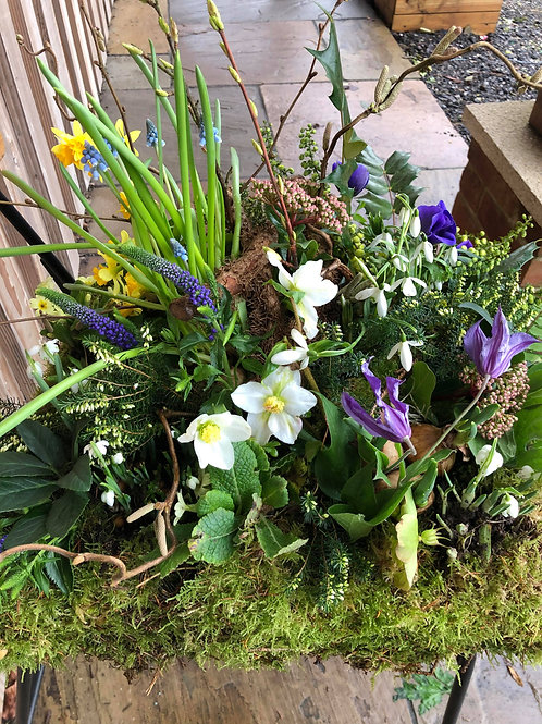 SPRING PLANTED WREATH