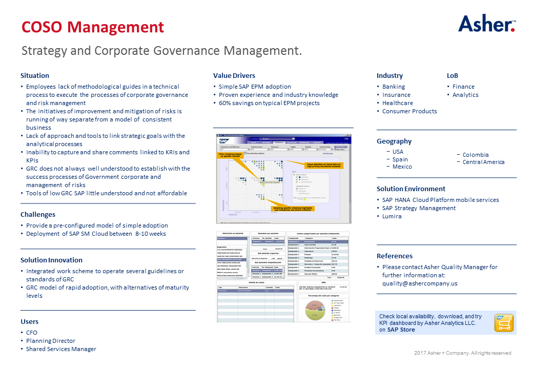 COSO Strategy Management