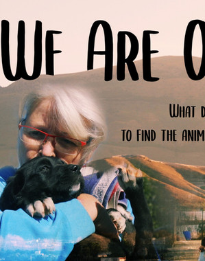 We Are Out There Trailer