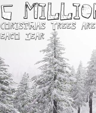 Plastic Pandemic Christmas Promo