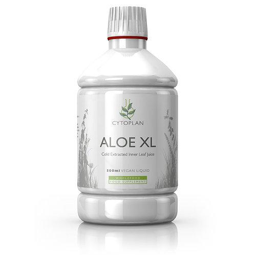 Aloe Vera XL - Inner Leaf