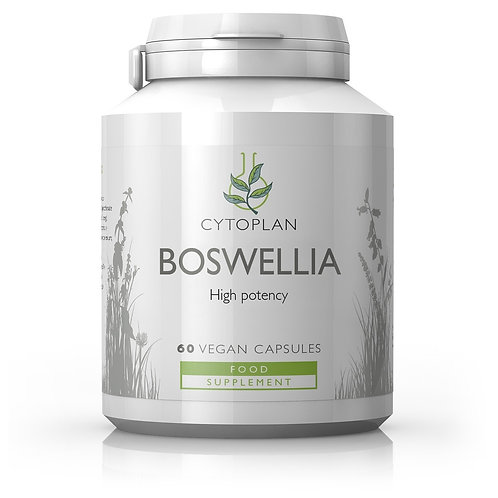 Boswellia Serrata - High Potency