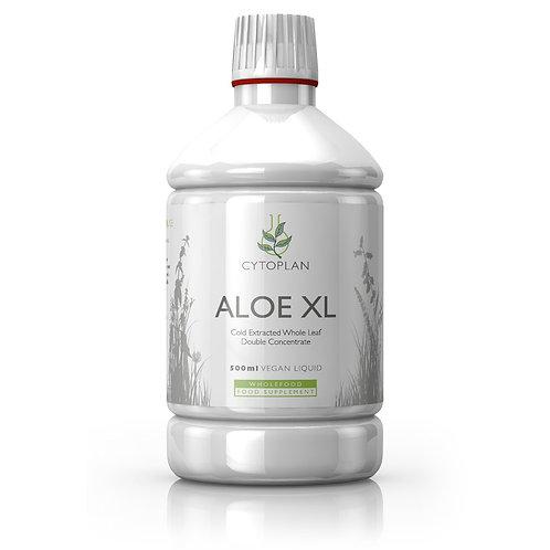 Aloe XL Whole Leaf