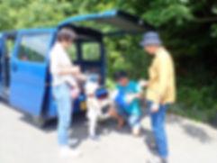 シュノーケル&島めぐりツアー 石垣島