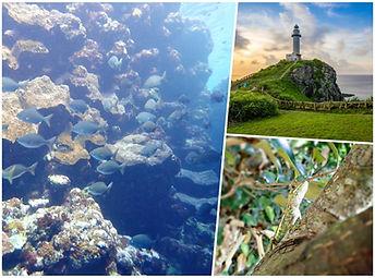 snorkel & island tour ishigaki
