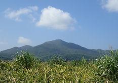 mount Omoto ishigaki
