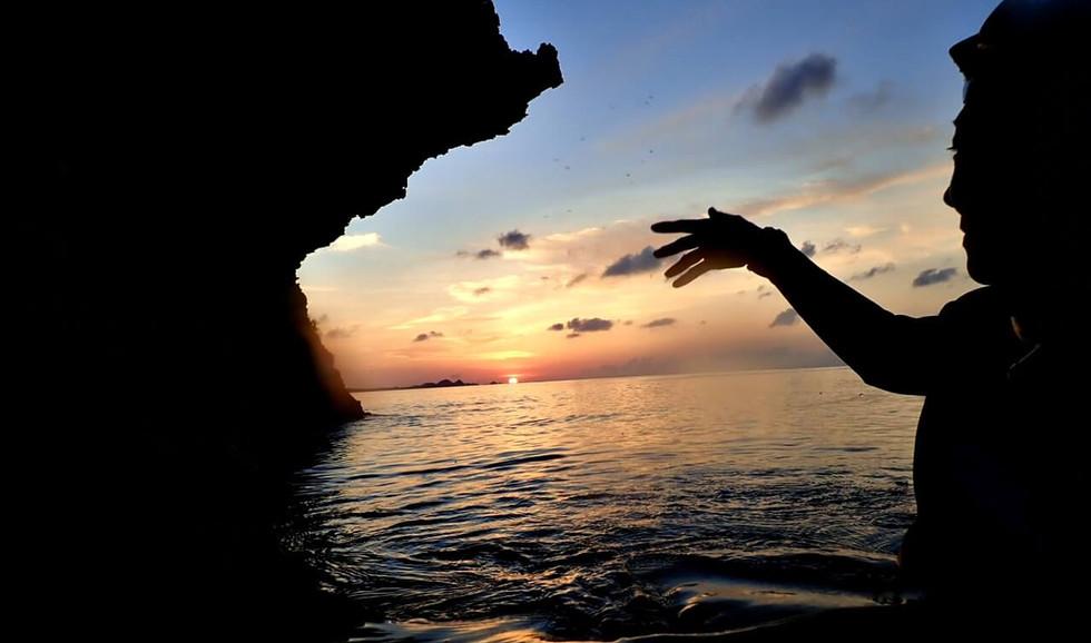 サンセットシュノーケルでは日中はなかなか見られないホワイトリップリーフシャークに会えるかも。 By sunset schnorkel sometime you can see white tipped reefshark.