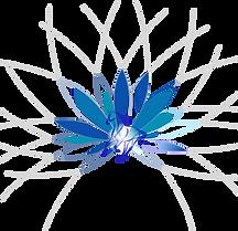 Logo_L'éveil_du_corps_BD_edited.png