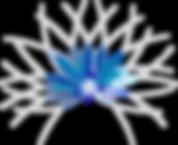 Logo_L'éveil_du_corps_BD.png