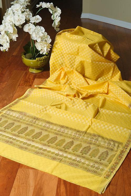 Soft Cotton Banarasi Saree in Light Yellow