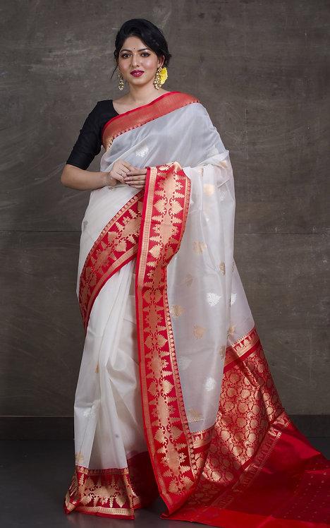 Pure Kora Banarasi Saree in White, Red, Silver and Gold