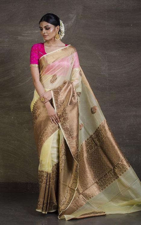 Skirt Border Pure Kora Banarasi Saree in Beige and Gold
