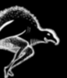 big_bird_transparent.png