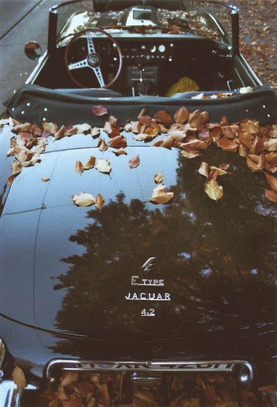 Jaguar E-Type Logo.jpg