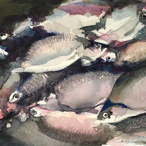 L'étal du poissonnier (d'après Lars Lerin) - 29x19 cm