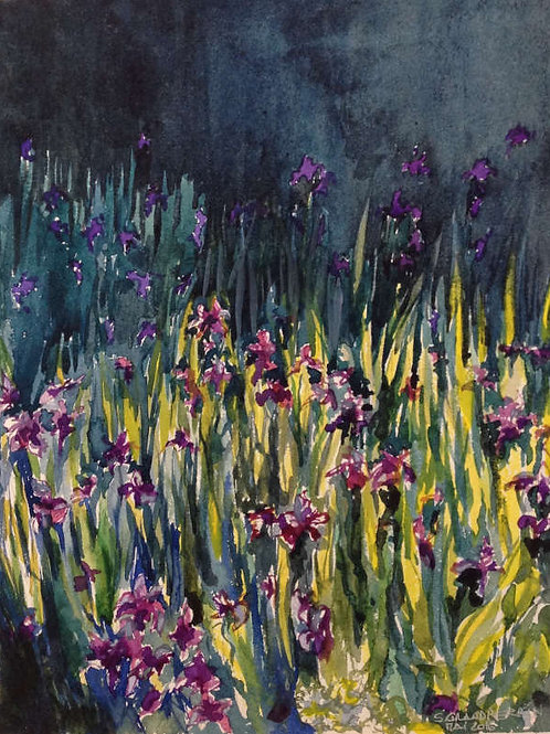 Les iris du Nezu museum (Tokyo) - 35x25 cm