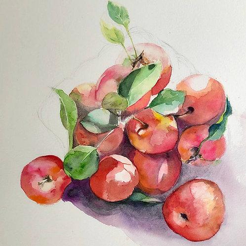 Panier de pommes rouges - 30x27 cm