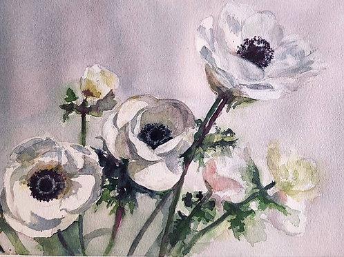 Bouquet d'anémones - 30x21 cm