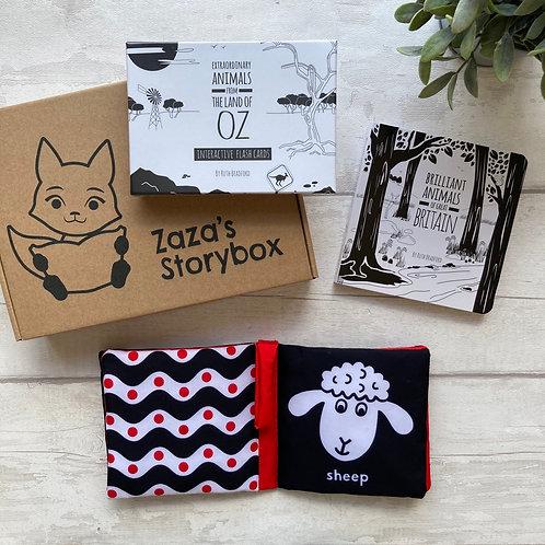 Newborn Storybox